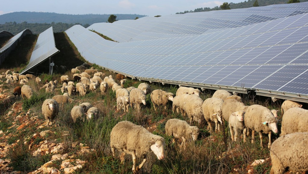 Citoyens, investissez dans les énergies renouvelables !