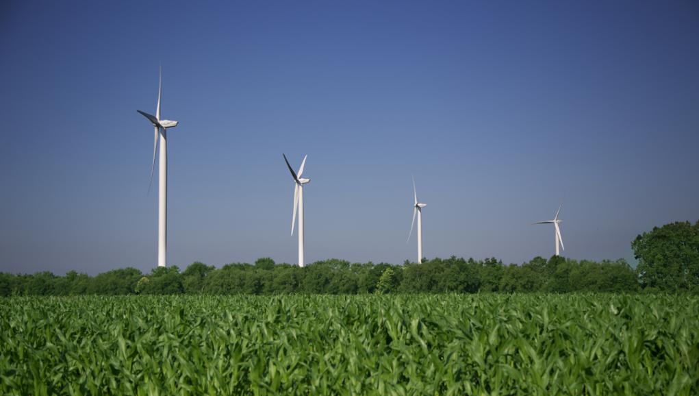 Financez des parcs éoliens dans le Finistère !