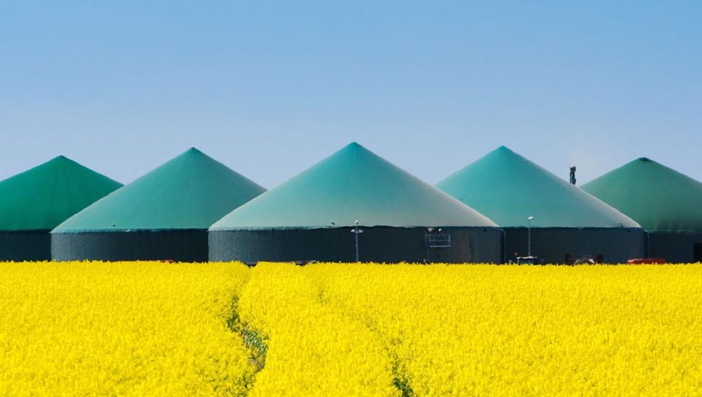 Région Hauts-de-France : ENGIE lance un appel à projets pour soutenir le développement du biométhane